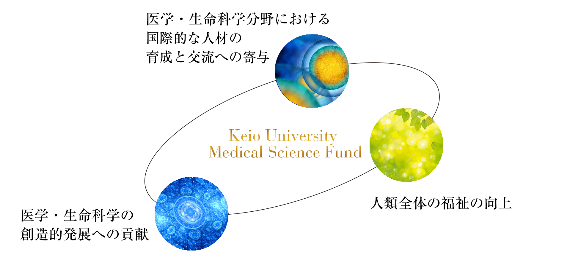 Medical Science Fund